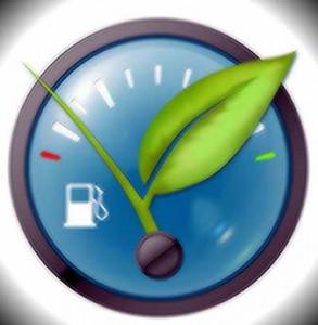 Nature Fuel Level